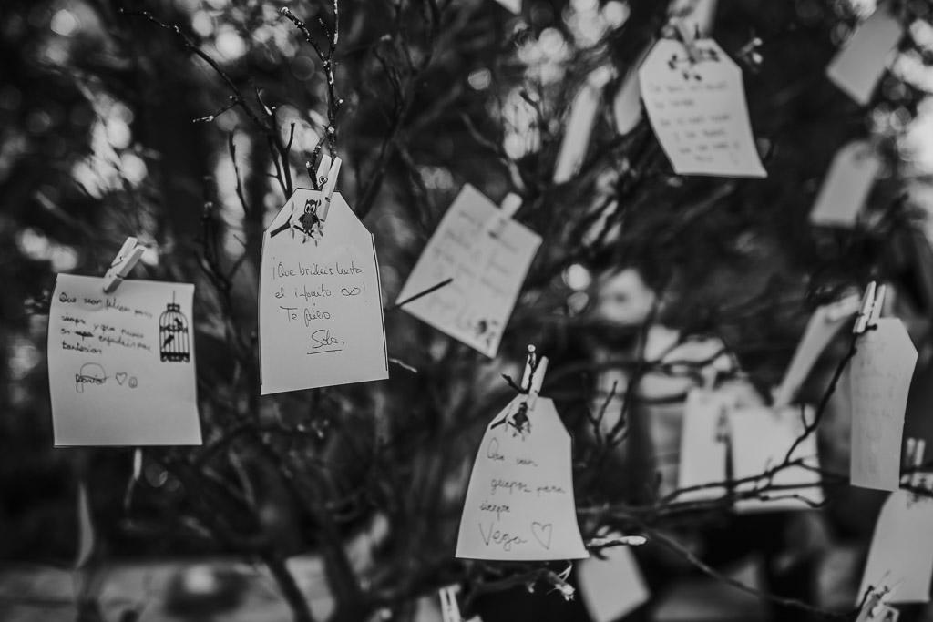 Carpe fotografía, ceremonia civil, Parador de la Arruzafa, Parador de Córdoba, Bodas en Córdoba, Fotógrafos de Córdoba, fotografía de boda, Bodas en el parador de la arruzafa, Boda civil córdoba, copa de bienvenida, blanco y negro